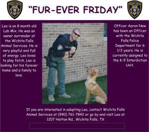 furever friday week 3