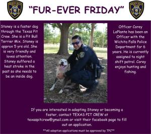 Furever Friday week 4