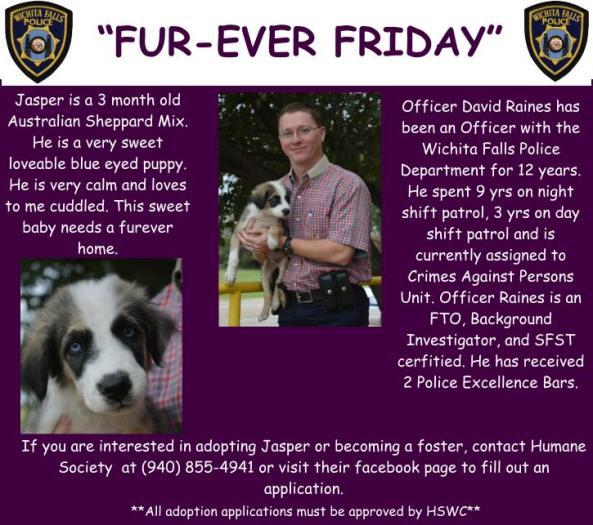 Furever Friday week 5