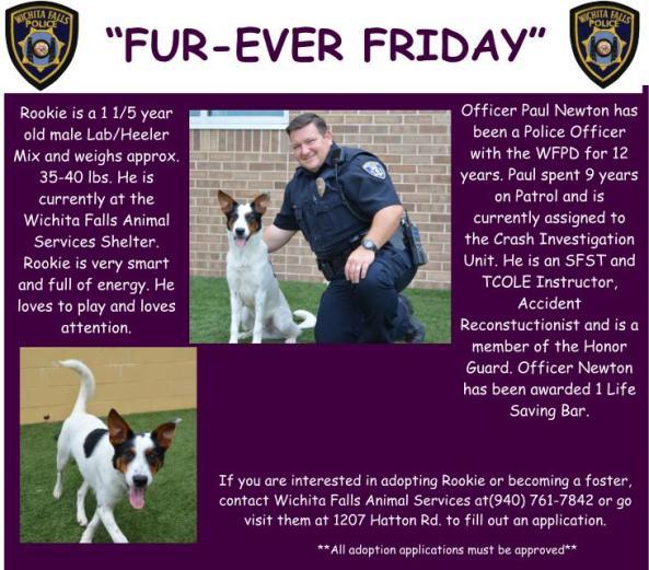 Furever Friday week 6