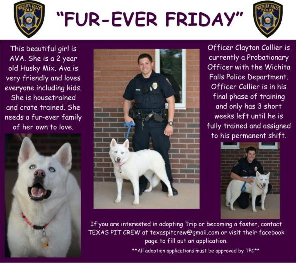 Furever Friday Week 7