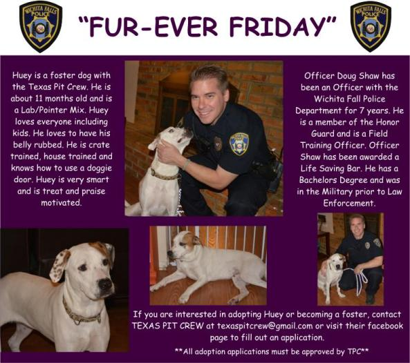 Furever Friday week 10
