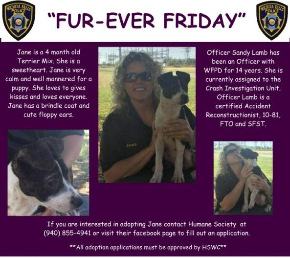 Furever Friday week 11