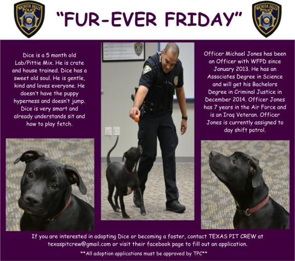 Furever Friday week 13
