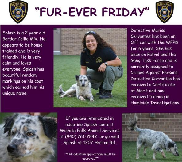 Furever Friday week 14