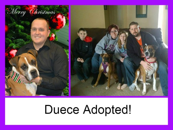 duece adopted