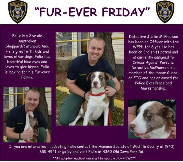 Furever Friday week 16