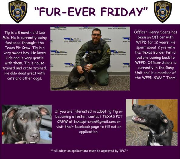 Fur-ever Friday Week 20