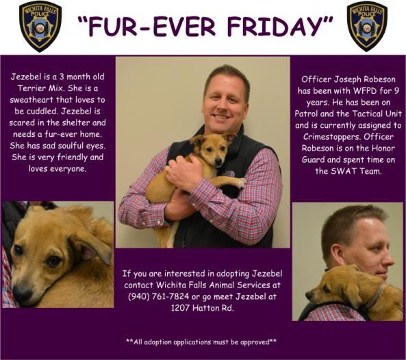 Fur-ever Friday Week 21