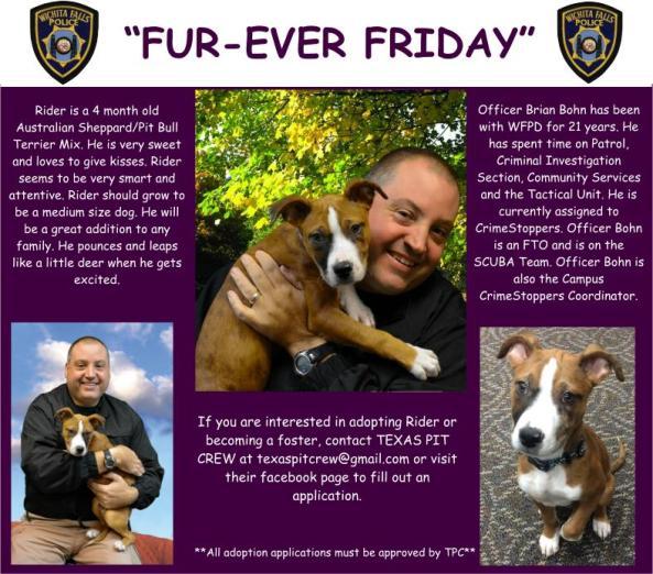 Fur-ever Friday Week 22