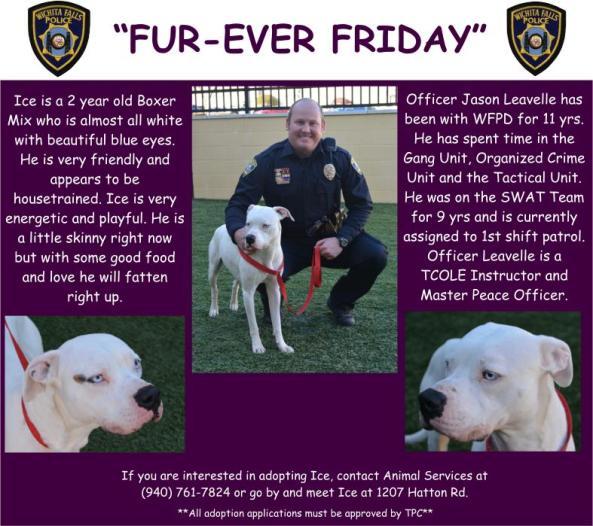 Furever Friday week 19