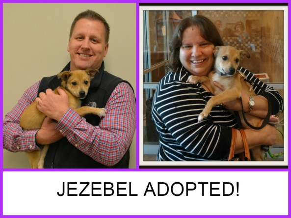 JEZEBEL ADOPTED