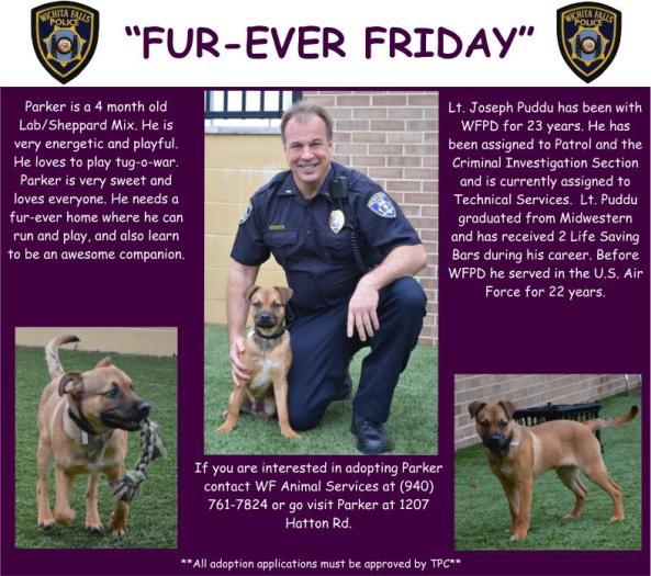 Fur-ever Friday Week 23