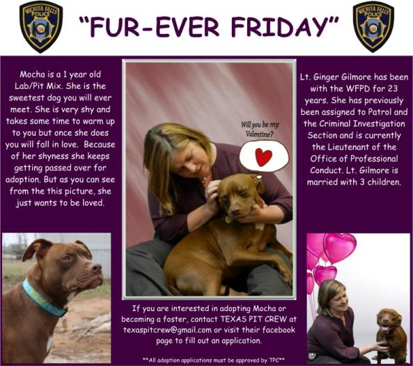 Fur-ever Friday Week 24
