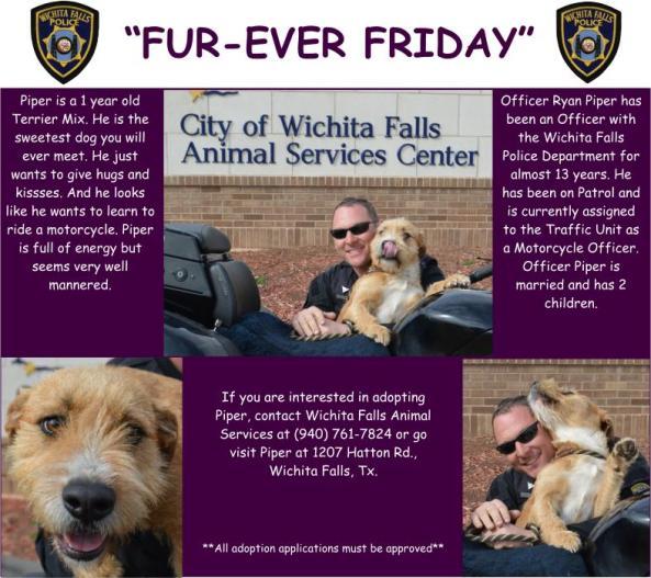 Fur-ever Friday Week 25