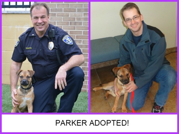Parker adopted