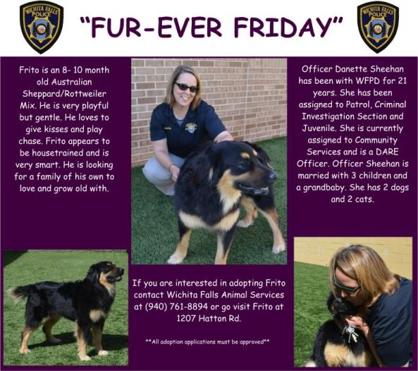Fur-ever Friday Week 31