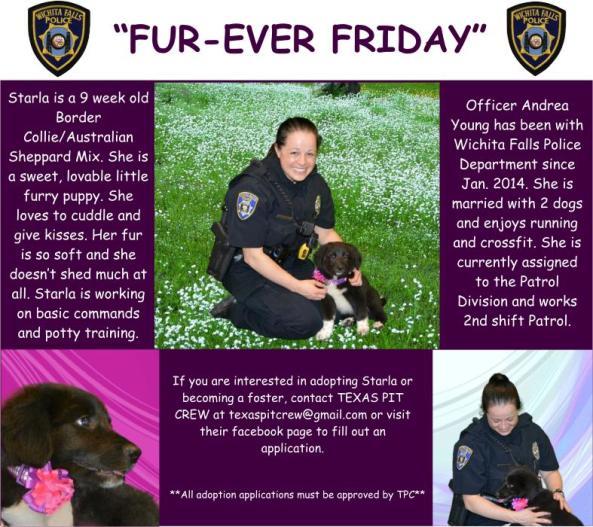 Fur-ever Friday Week 32