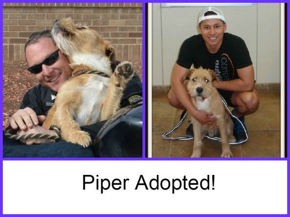 Piper adopted