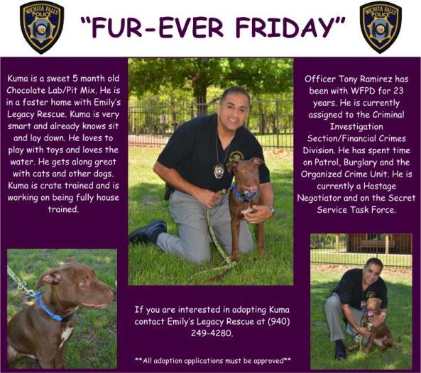 Fur-ever Friday Week 33