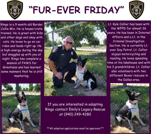 Fur-ever Friday Week 36