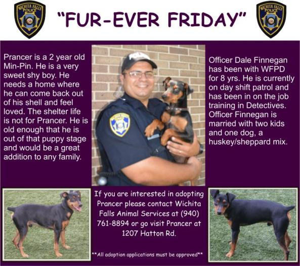 Fur-ever Friday Week 37