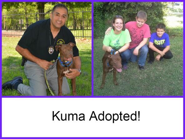 Kuma Adopted