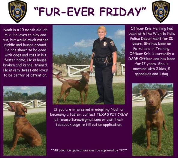 Fur-ever Friday Week 38