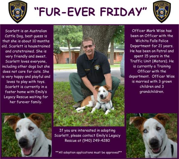 Fur-ever Friday Week 39