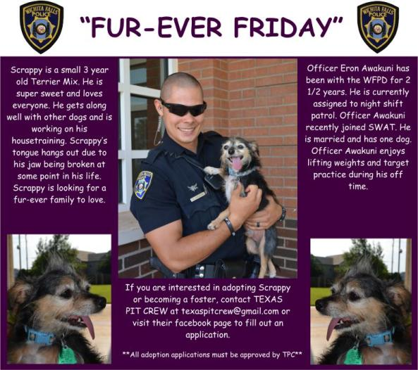 Fur-ever Friday Week 41