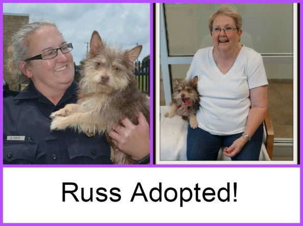 Russ Adopted