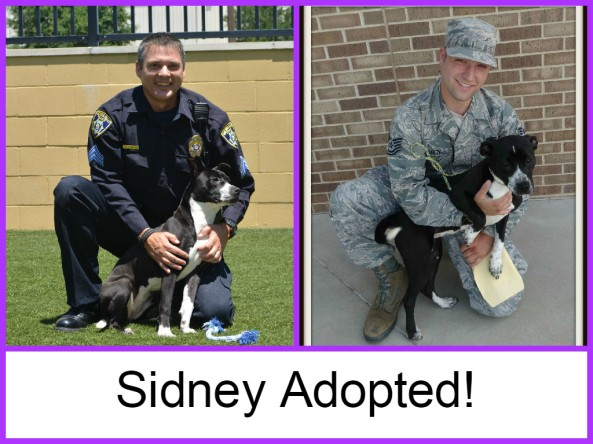 Sidney adopted