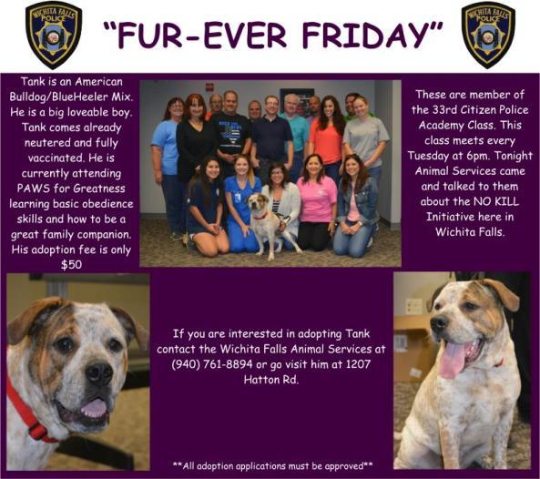Furever Friday Week 47